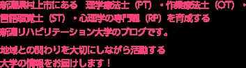 新潟県村上市にある理学療法士(PT)・作業療法士(OT)・言語聴覚士(ST)・心理学の専門職(RP)を育成する新潟リハビリテーション大学のブログです。地域との関わりを大切にしながら活動する大学の情報をお届けします!