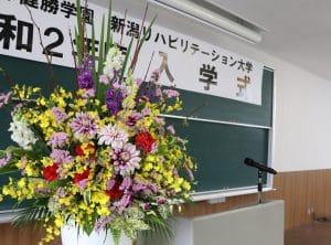 新入生の皆さん、ご入学おめでとうございます!