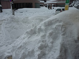 大雪関連被害は出ていません